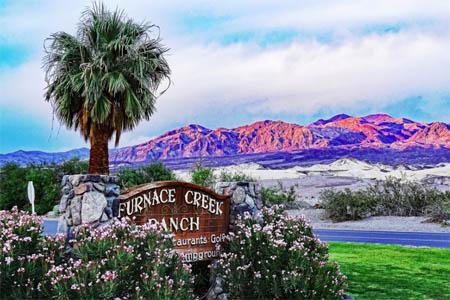 Furnace Creek, Death Valley (Date Grove)